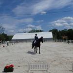 Egzaminy na odznaki jeździeckie